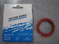 Сальник распределительного вала ZAZ Forza 480-1006020