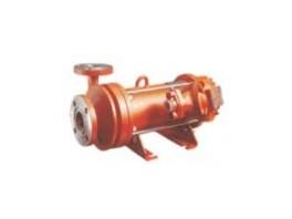 Pumps TsG 50/50 TsG 25/80 K B of E T chemical