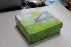 Коробка картонная на обувь