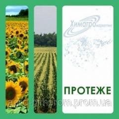 Гербицид Протеже аналог Базагран - бентазон 560 г/л, для сои, пшеници, рожь, ячменя