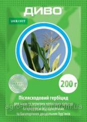Гербицид Диво, Укравит; дикамба в форме натриевой соли 750 г/кг, пшеница, ячмень, рожь, овес, кукуруза
