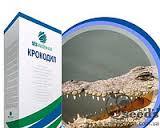 Семена свеклы / насіння буряка Крокодил SESVanderHave Бельгия