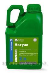 Инсектицид / Інсектицид Актуал (Актеллик 500 ЕС) піриміфос-метил 500 г/л