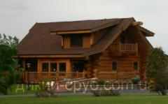 Дачный дом проект