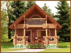 Дом-баня из дерева