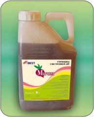 Системний гербіцид для знищення однорічних двосім'ядольних та деяких злакових бур'янів у період вегетації цукрових та кормових буряків