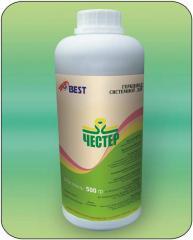 Селективный системный гербицид для уничтожения однолетних и многолетних злаковых и двудольных сорняков в посевах кукурузы.