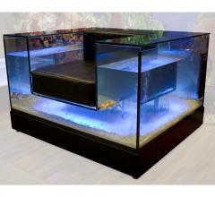 Chair - an aquarium, a table aquarium