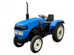 Тракторы Xingtai 244