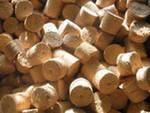 Отходы лесозаготовок
