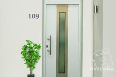 Входная дверь Ryterna RD100