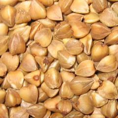 The buckwheat, grain, bean and krupyany crops,