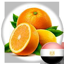 Апельсины производства