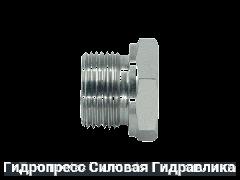 Заглушка шестигранная BSP - внешняя / внутренняя резьба - Form A, Нержавеющая сталь Rubrik 5.47
