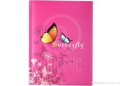 Notebook children's Butterfly of A5 series, cage, 80 l.
