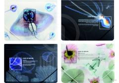 The folder plastic A4 on elastic bands of Optima X-Ray, allsorts