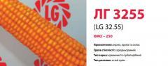 Семена кукурузы ЛГ 3255 (LG 32.55)