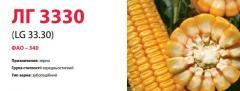 Семена кукурузы ЛГ 3330 (LG 33.30)