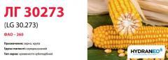Семена кукурузы ЛГ 30273 (LG 30.273)