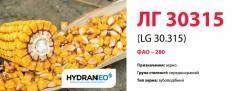 Семена кукурузы ЛГ 30315 (LG 30.315) ФАО - 280