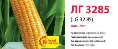 Семена кукурузы ЛГ 3285 (LG 32.85)