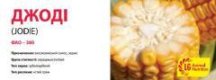 Семена кукурузы ДЖОДІ (JODIE)