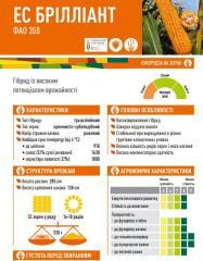 Семена кукурузы ЕС БРІЛЛІАНТ