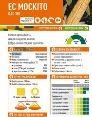 Семена кукурузы ЕС МОСКІТО