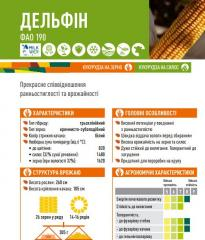 Семена кукурузы ДЕЛЬФІН