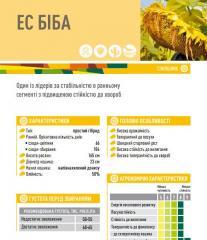 Семена подсолнечника ЕС БІБА