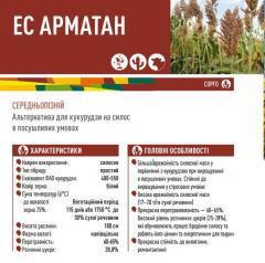 Семена сорго ЕС АРМАТАН
