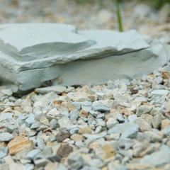Полезные нерудные ископаемые