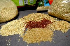 Export: agricultural products, wheat food, wheat