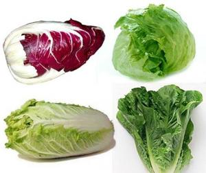 Head lettuces