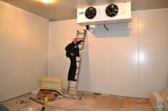 Production refrigerating and freezers. Turnkey