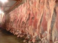 Half carcass all-beef