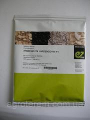 Семена кабачка Ардендо 174 F1  500с