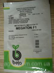 Семена капусты белокачанной  Мегатон F1 2500с