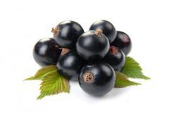 Berries, blackcurrant to buy blackcurrant, Kiev,