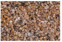 Фасадная плита 1200*1500 РИМ -Колор (цвет по