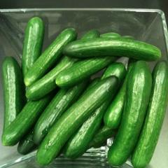 Hothouse to buy cucumbers (sale), the price,