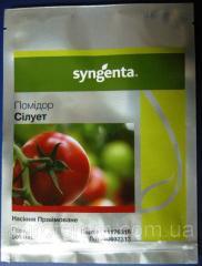 Семена томата Силуэт F1 500с