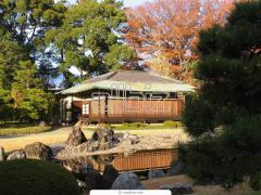 Деревенские дома из бруса, дерева