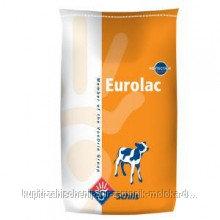 Substitute of whole milk for calfs Evrolak orange
