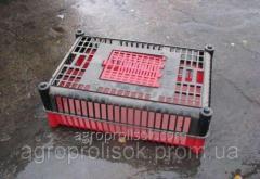 Ящики для транспортировки птицы
