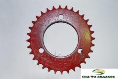 Pinion OZSH 00474 wheel drive musculoscheleti