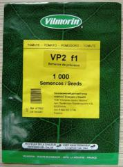 Tomato seeds this VP-2 F1 1000.