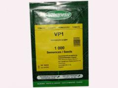VP-1 tomato seeds (1000 with.)