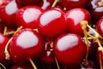 Grade sweet cherry V. Chkalov, space, Melitopol