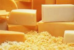 Сыр голландский из натурального цельного молока.